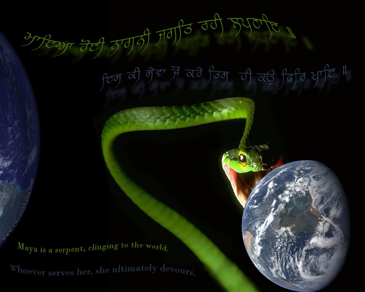 Maya the Snake